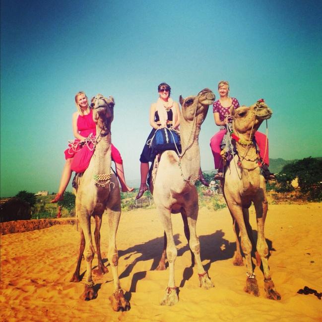 Camel Trek Pushkar